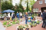 pflanzenmarkt2