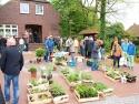 pflanzenmarkt1
