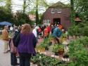 pflanzenmarkt3